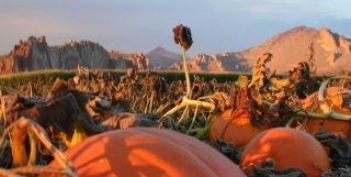 Our list of top things to do in fall in Central Oregon